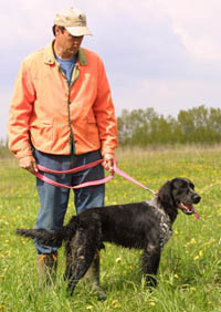 Mike, with Blue Picardy Spaniel after training to C.K.C. Field Dog Jr. title